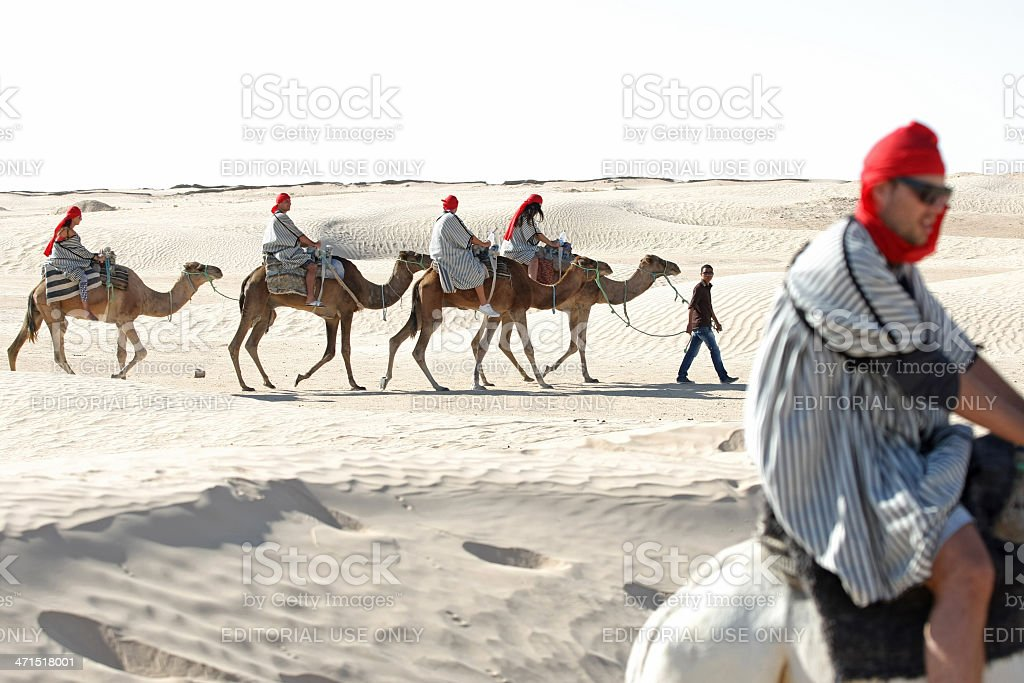 Tourists with camels royalty-free stock photo