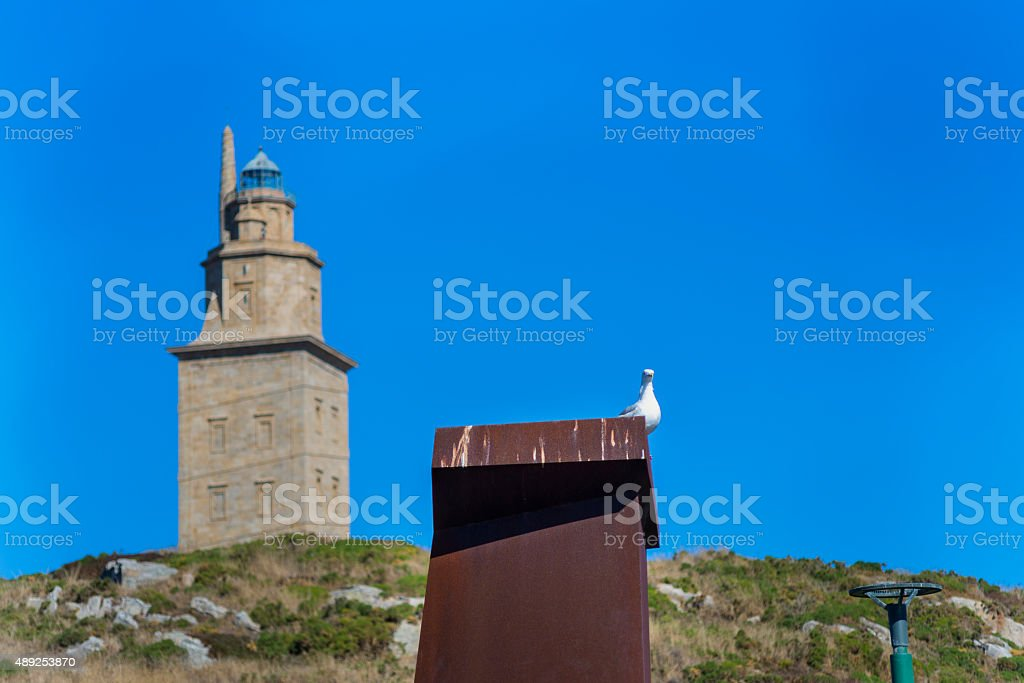 Tower and seagull. stock photo