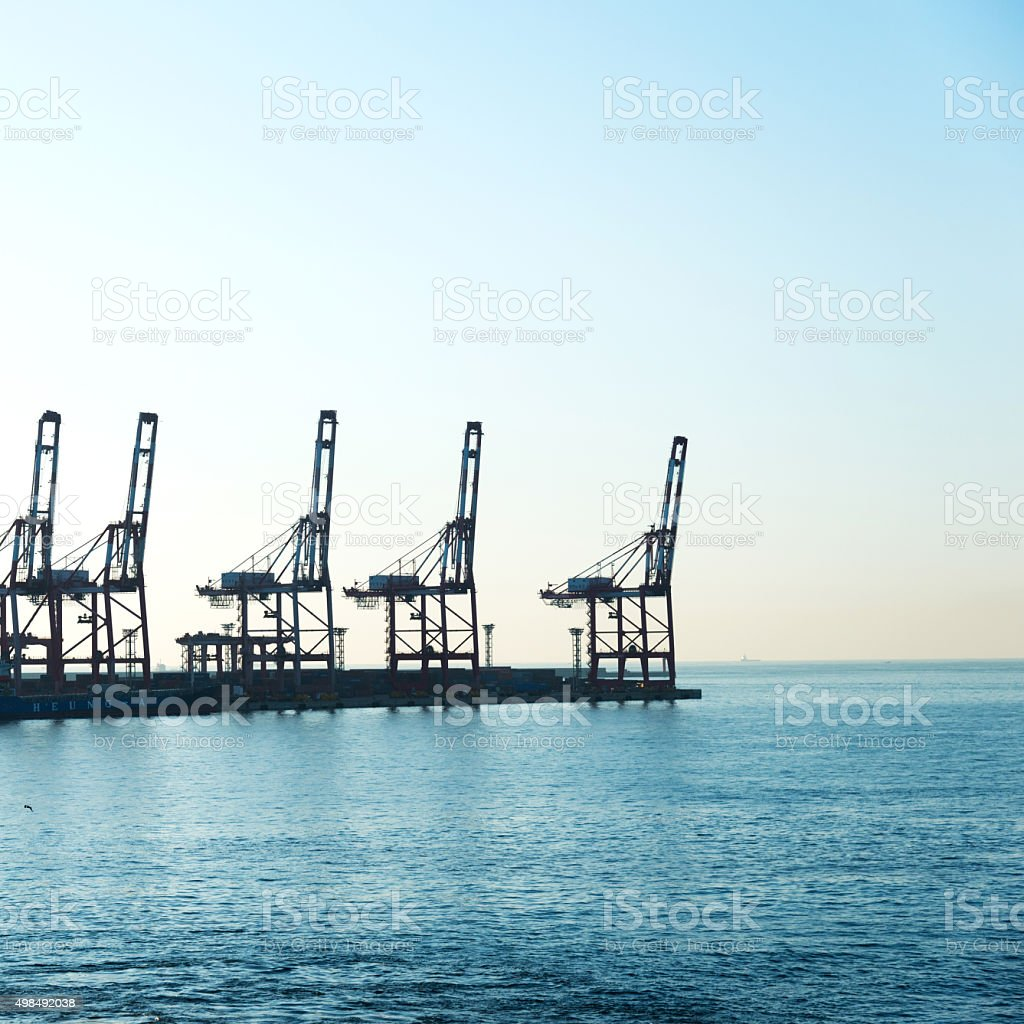 Tower cranes in harbour stock photo