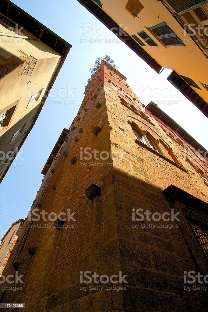 Tower in Lucca stock photo