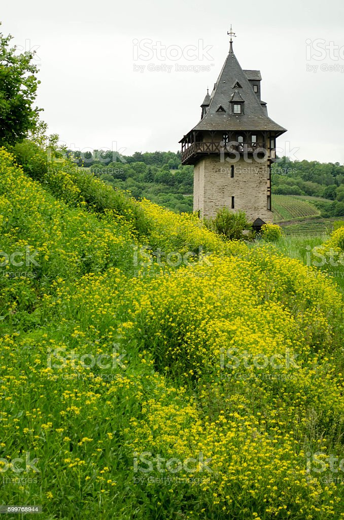 Tower in Oberwesel stock photo