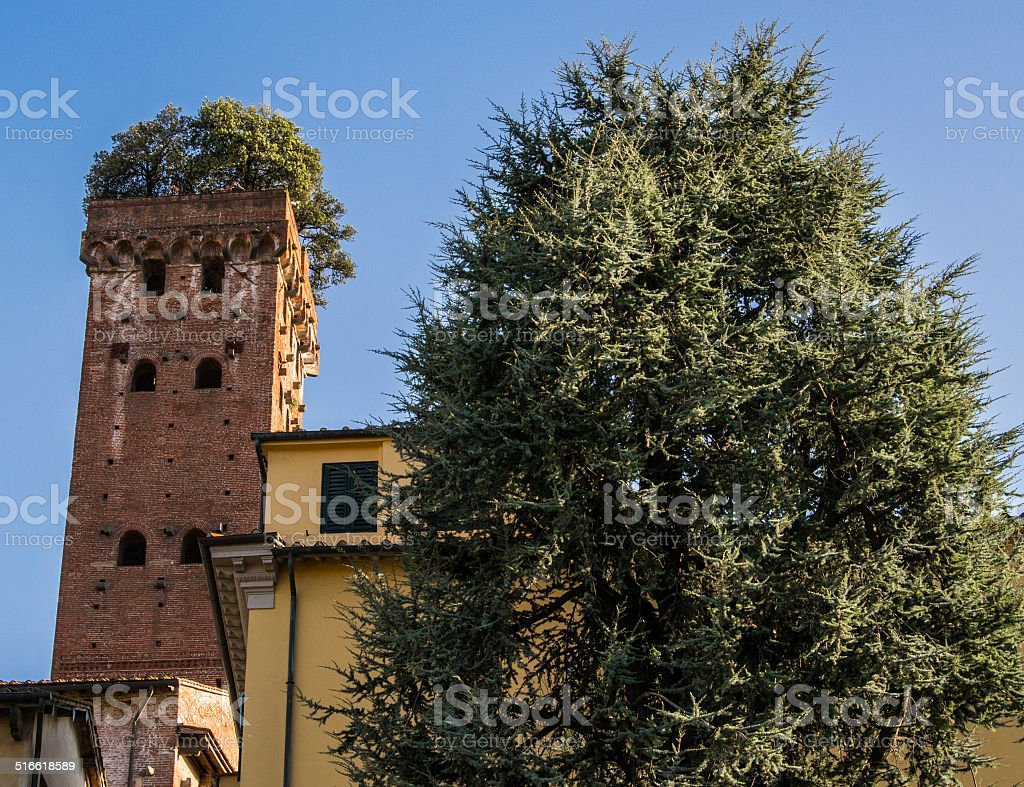 Tower of Giunigi in Lucca, Italy stock photo