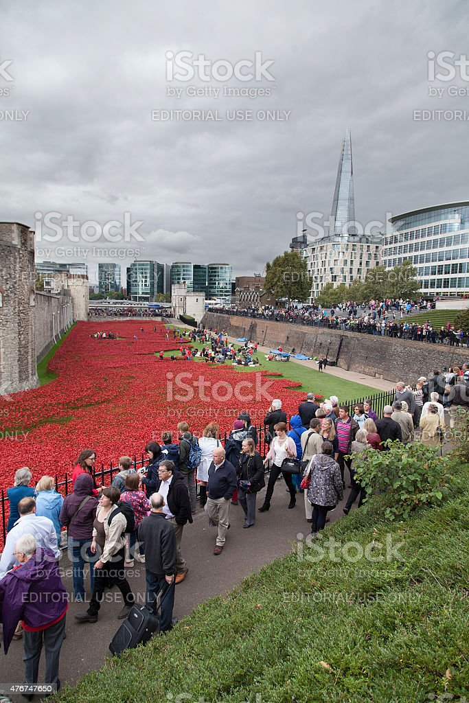 Tower of London poppies stock photo