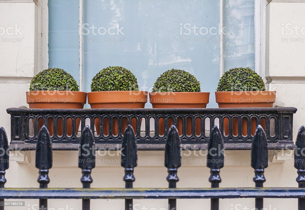 Town House Window Box stock photo