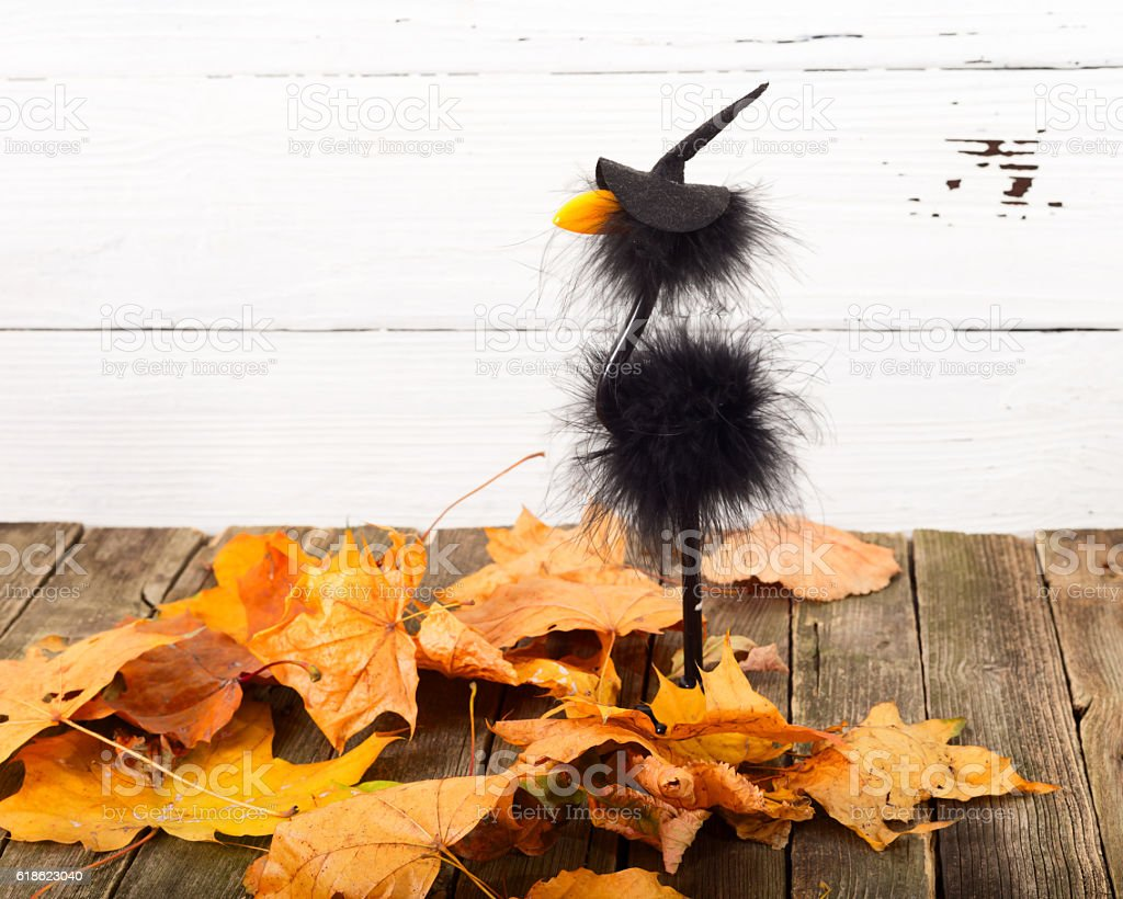 Toy crow in a cap and autumn leaves stock photo