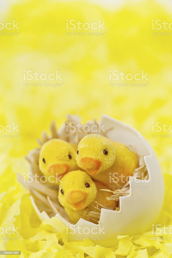 Toy easter chicks on yellow bckground stock photo