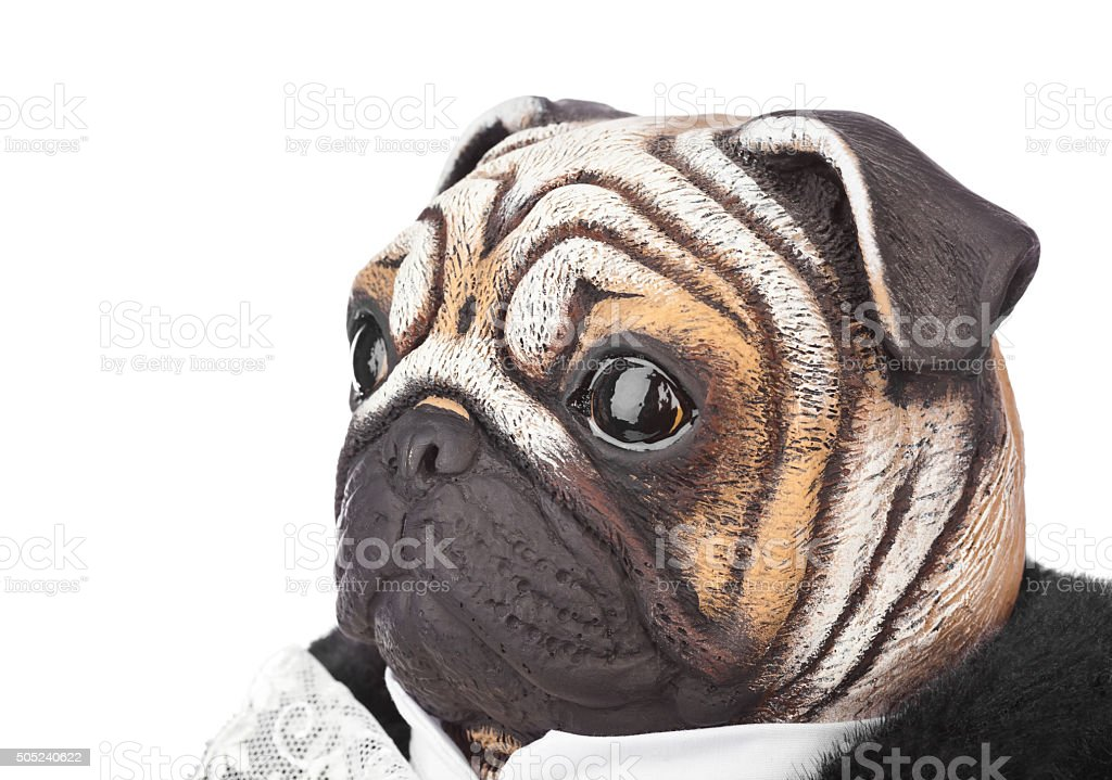 Toy pug dog in butler costume stock photo