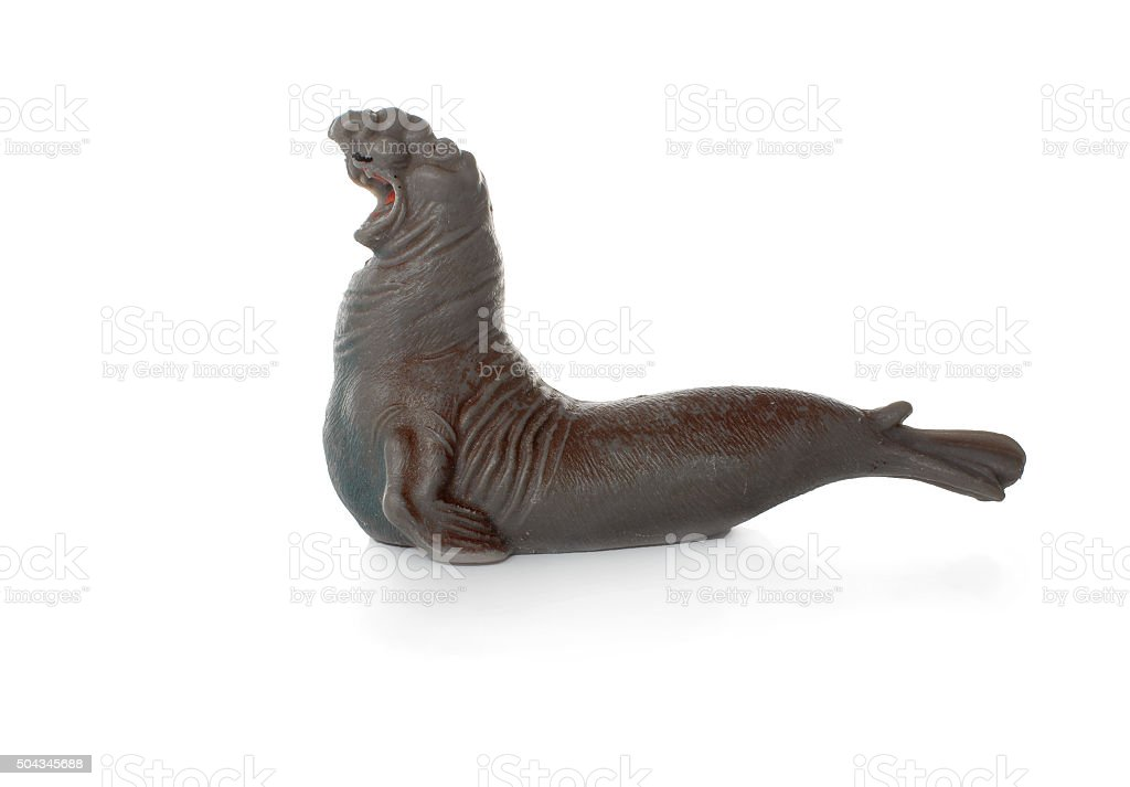 toy sea elephant stock photo