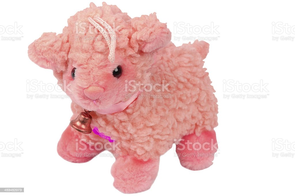 Toy sheep isolated on a white stock photo