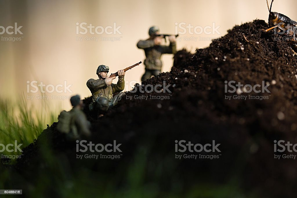 Toy soldiers locust royalty-free stock photo