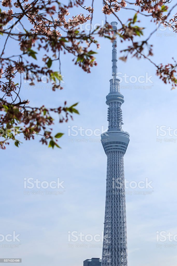Toyko sky tree. stock photo