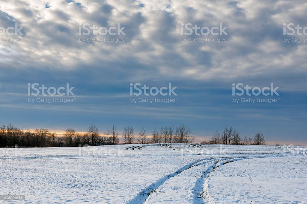 Traces  car in snowy fields. stock photo