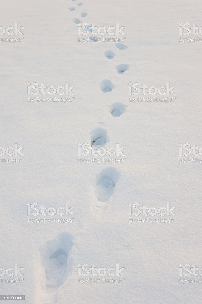 Traces in snow stock photo