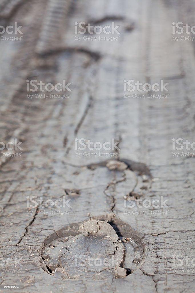 traces of horseshoes stock photo