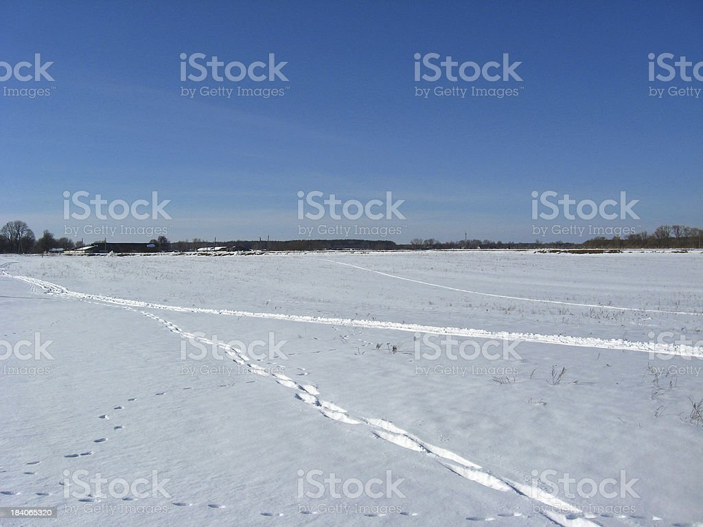 Traces on a snow royalty-free stock photo
