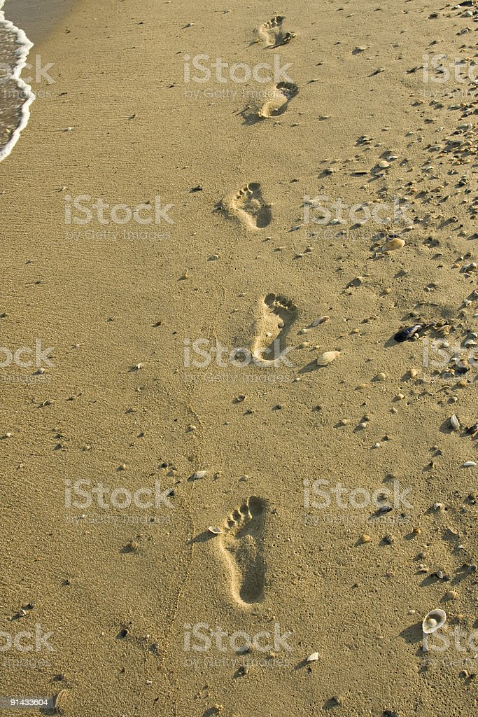 Traces on sand royalty-free stock photo