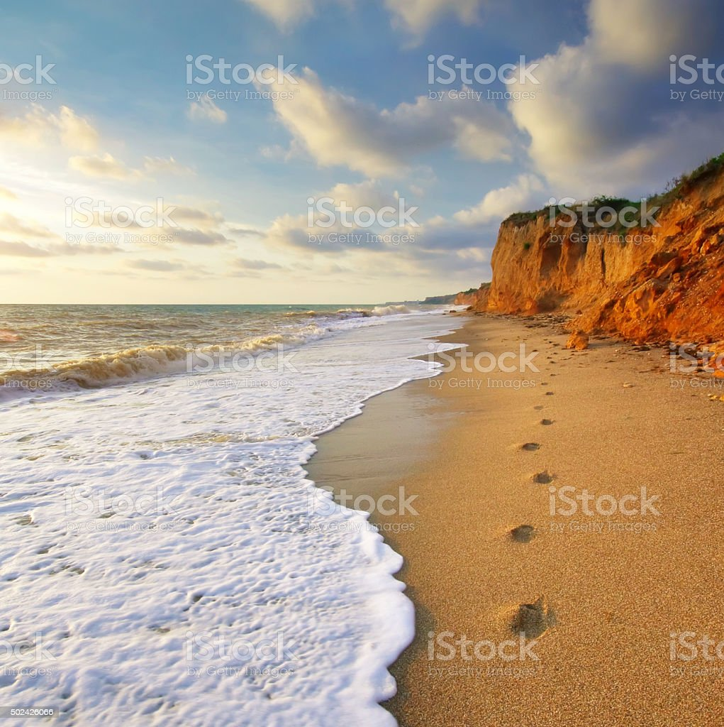 Traces on the shore stock photo