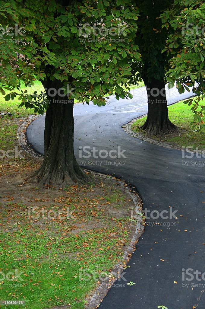 track in park royalty-free stock photo
