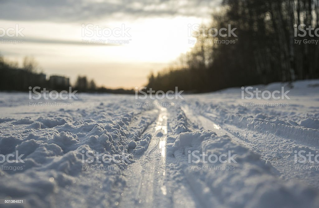 Track in the forest royalty-free stock photo
