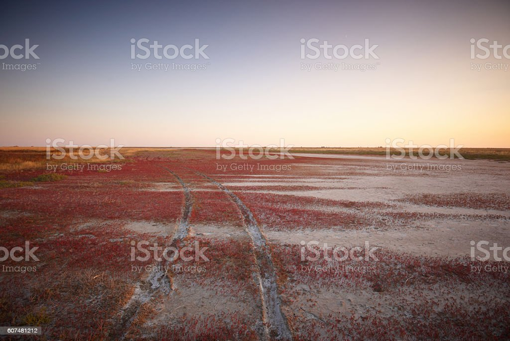 Track of the vehicle stock photo