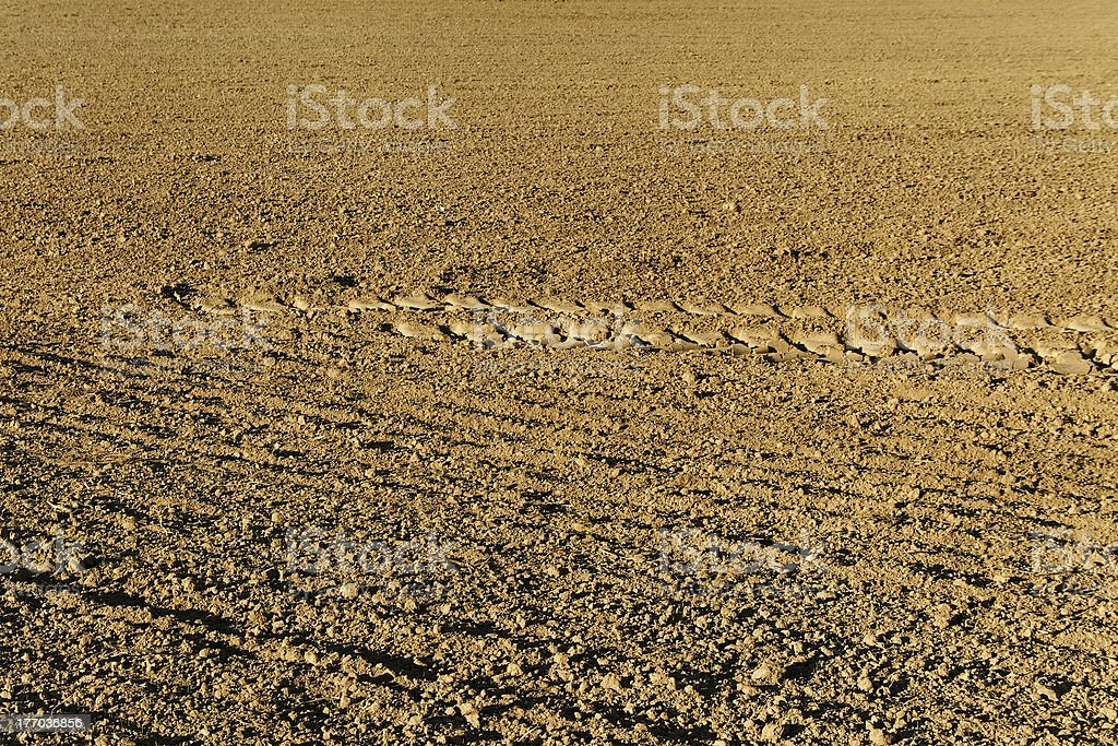 Track on soil. royalty-free stock photo