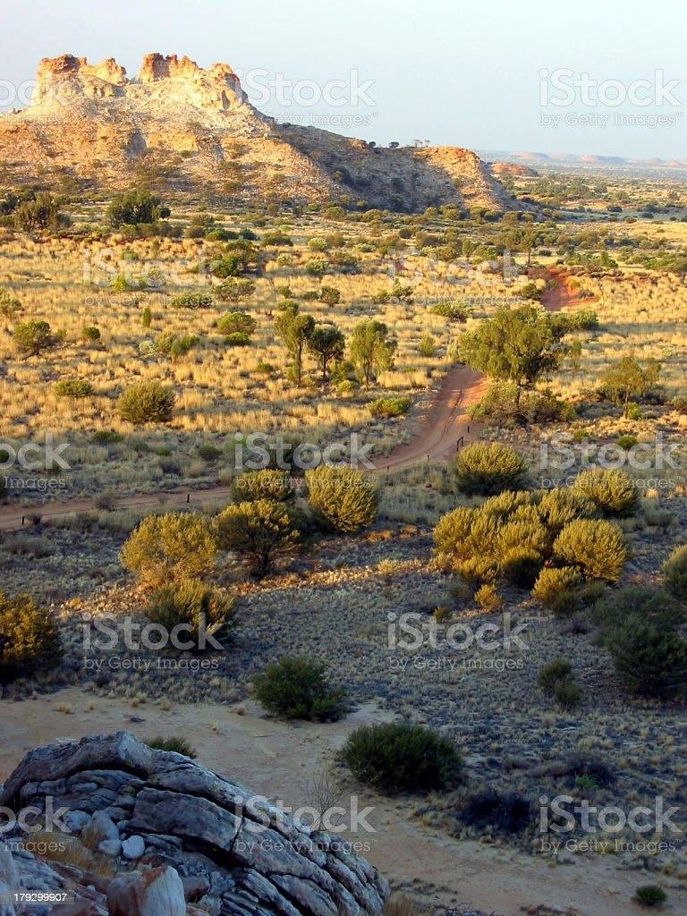 Track Through Grasslands royalty-free stock photo