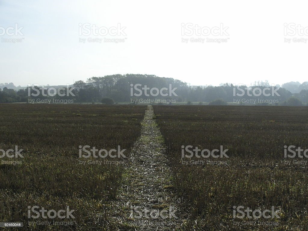 Track to Nowhere royalty-free stock photo