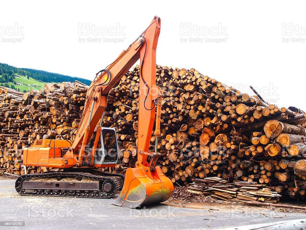 Tracked excavator and logs at Drau cycle path in Austria stock photo