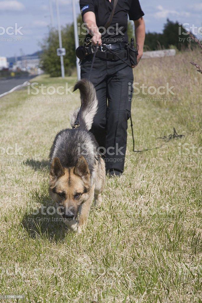 Tracking stock photo