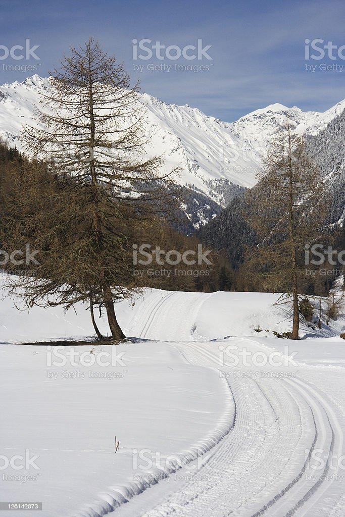 Tracks In A Snowy Valley stock photo