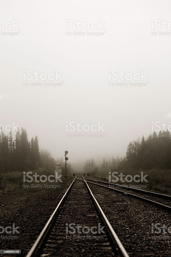 Tracks in the Fog royalty-free stock photo