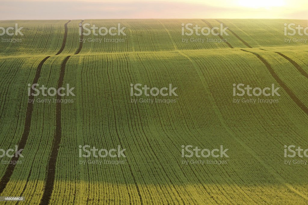 Tracks on the hills royalty-free stock photo