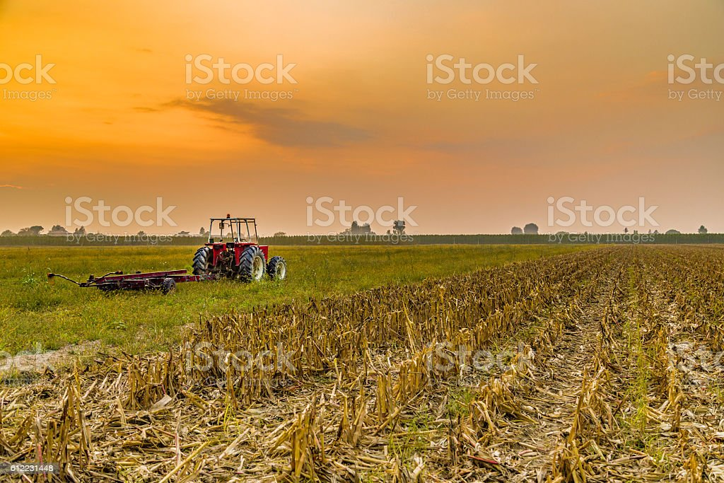 tractor and harvested land stock photo