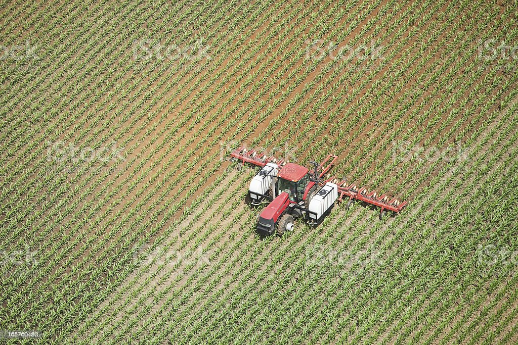 Tractor Applying Liquid Nitrogen Fertilizer to Corn Field stock photo