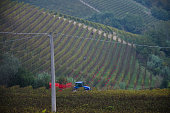 tractor at work among the vineyards of Piedmont