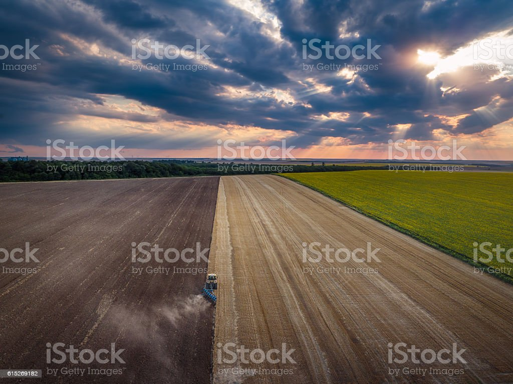 Tractor cultivating field at autumn stock photo