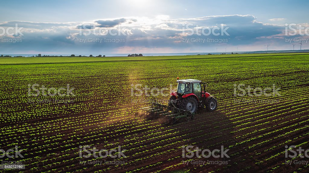 Tractor cultivating field at spring stock photo