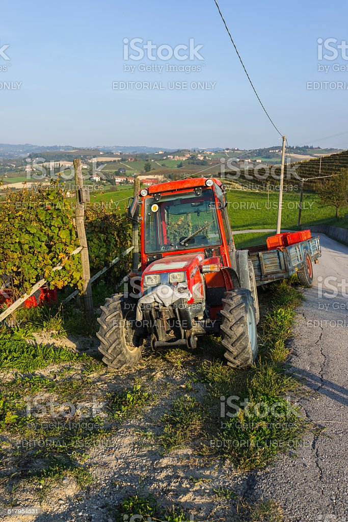 Tractor for grape harvest (Langhe, Unesco World Heritage site) stock photo