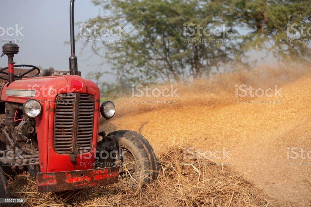 Tractor Harvesting Crop stock photo