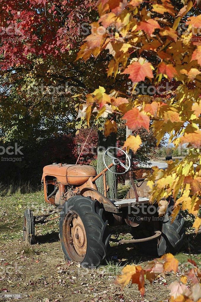 Трактор в Осень Стоковые фото Стоковая фотография