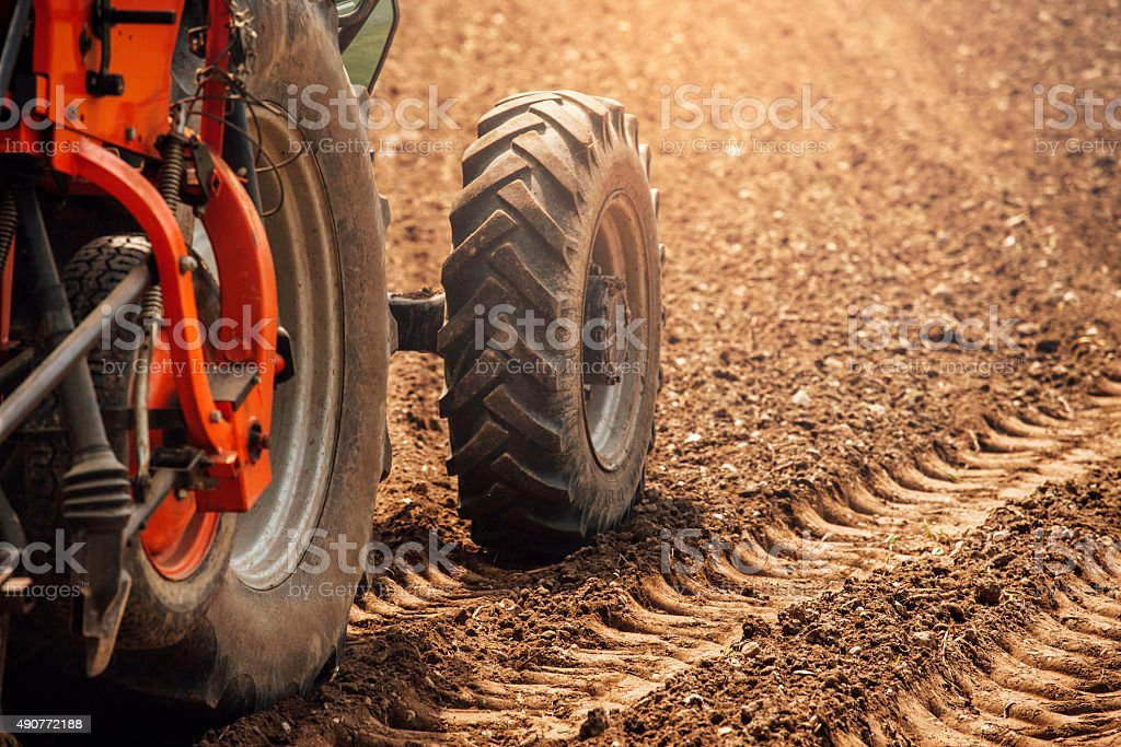 Tractor in the fields stock photo