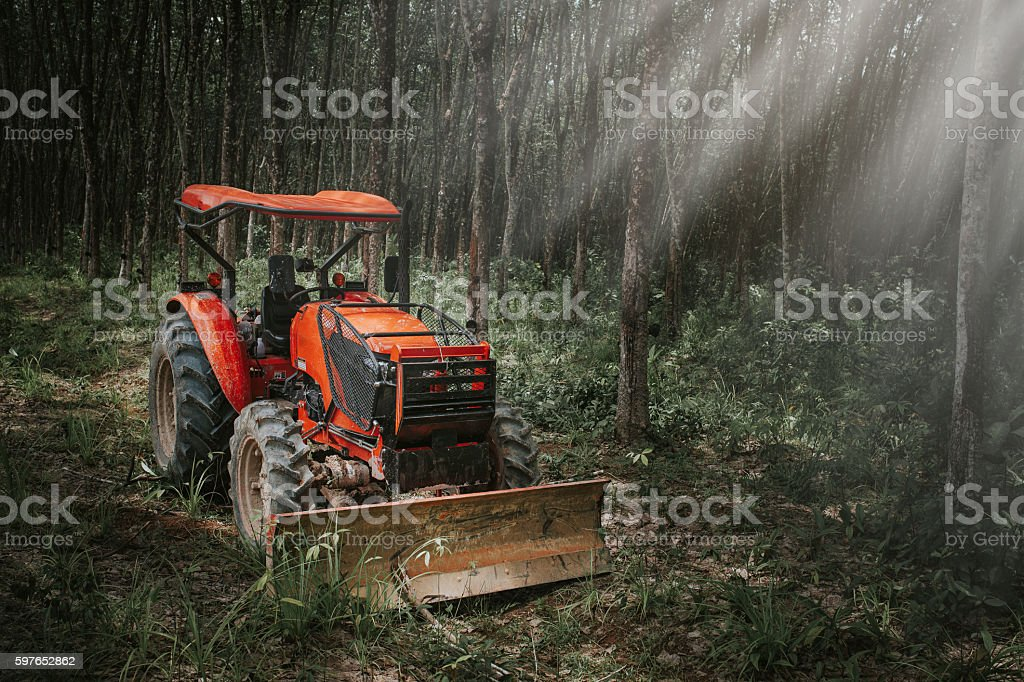 Tractor in the rubber plants forest stock photo