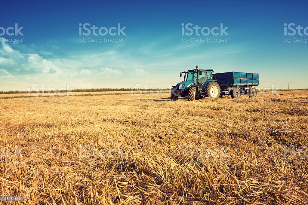 Tractor in the stubble field stock photo