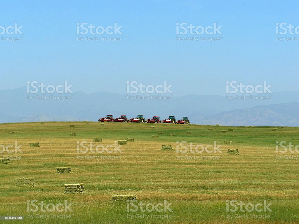 Tractor Lineup royalty-free stock photo