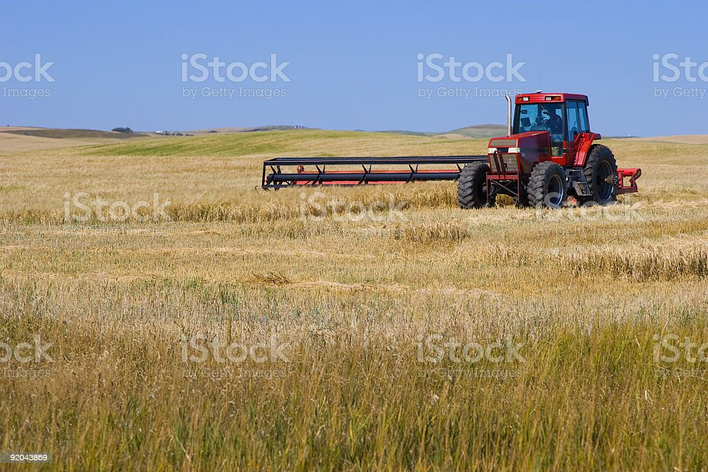 Tractor Mowing Wheat royalty-free stock photo