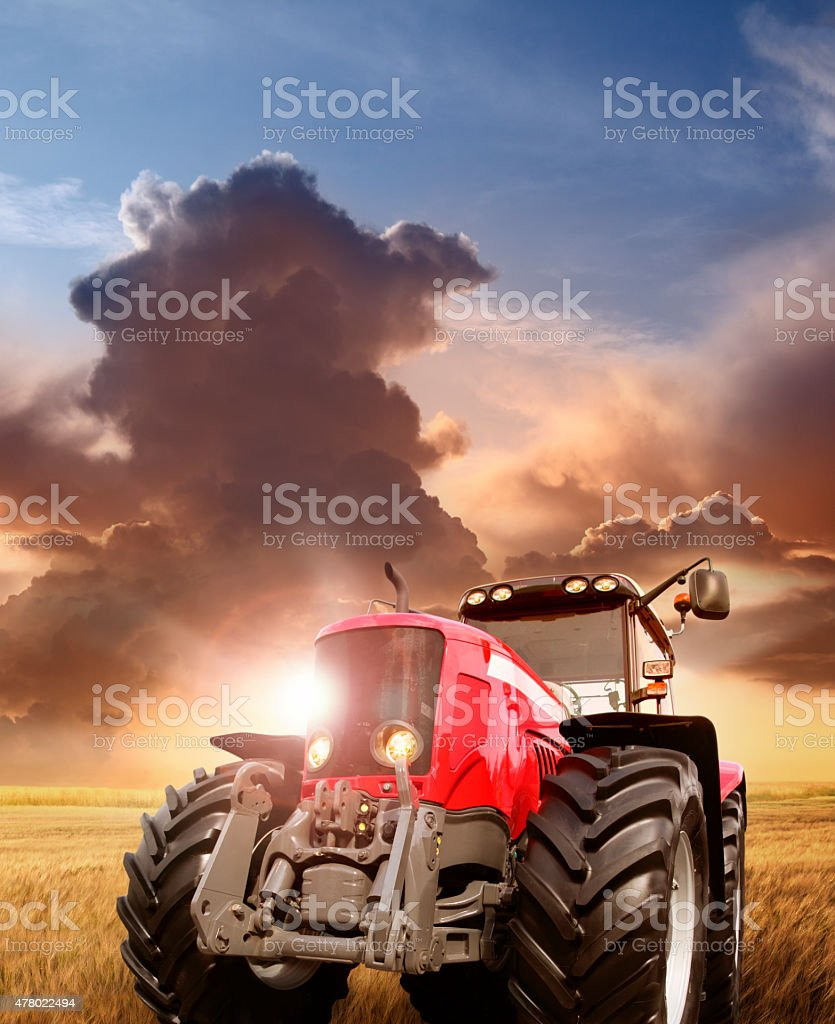 Tractor on the barley field by sunset stock photo