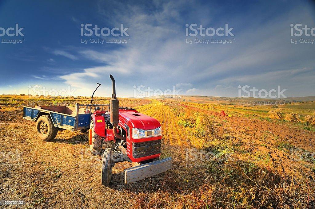 Tractor, stock photo
