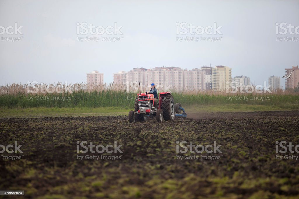 Tractor preparation the field stock photo