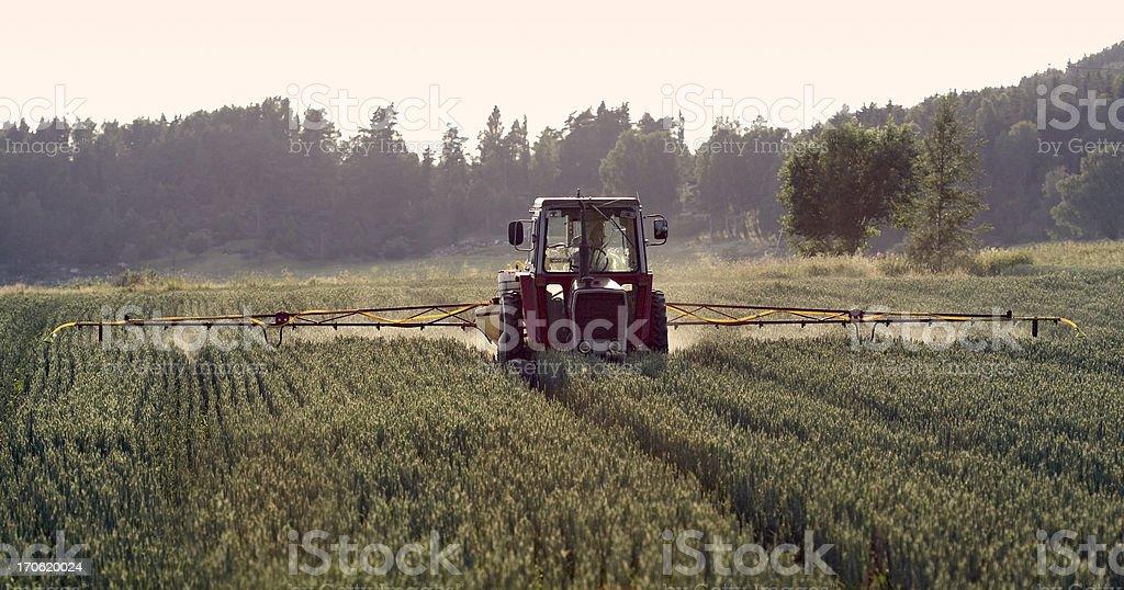 Tractor spraying crop, field sprayer stock photo