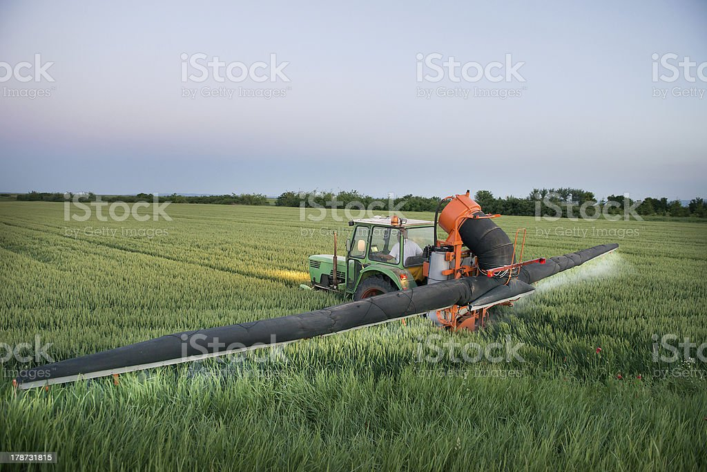 Tractor spraying on the field royalty-free stock photo